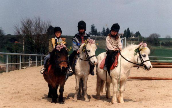 centre équestre, cheval