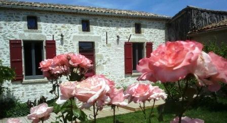 vue extérieure derrière les roses du jardin,  lesglycines, glycines